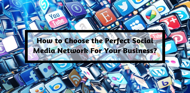 How to Choose The Perfect Social Media Network For Your Business