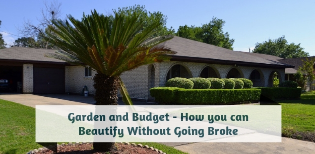 Garden and Budget - How you can Beautify Without Going Broke