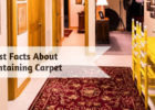 9 Fast Facts About Maintaining Carpet