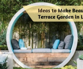 Ideas to Make Beautiful Terrace Garden in Low Budget
