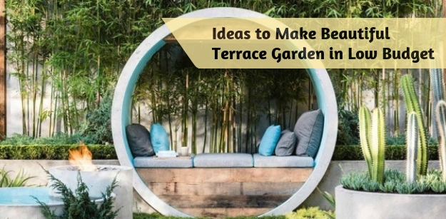 Ideas to Make Beautiful Terrace Garden in Low Budget