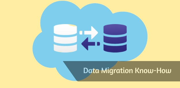 Data Migration Know-How