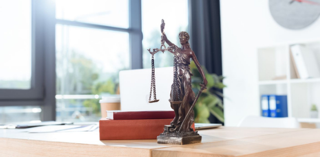 What Types of Criminal Cases Does a Criminal Defense Attorney Typically Handle