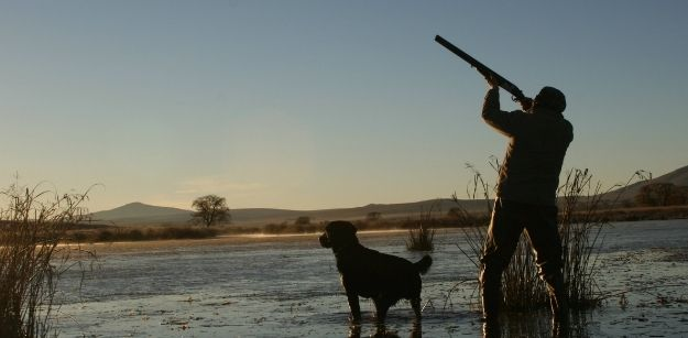 Tricks To Become A Duck Hunting Pro
