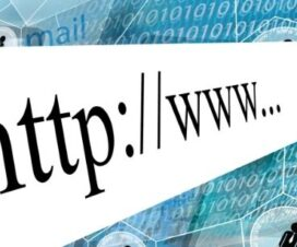 What are Country Code TLDs?